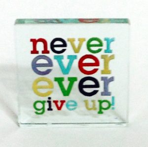 never ever give up 2146x2129